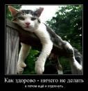 Личный фотоальбом Артема Ефимова