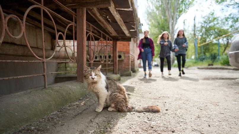 Фото Бориса Панкина,,,(,стихи ру) OLAP0iczWOs