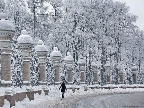 Переменчивая зима