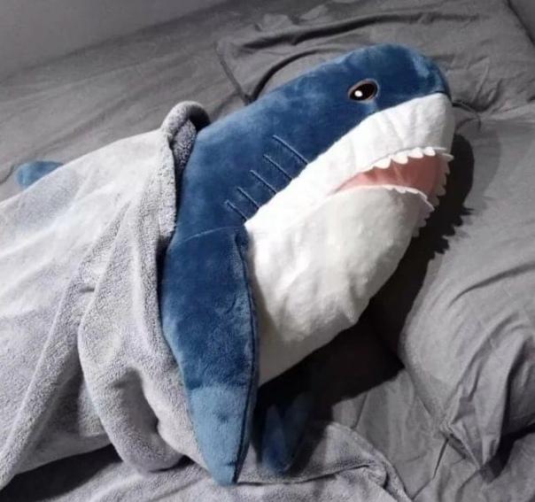 Петербуржцы больше не смогут купить акулу из IKEAК...