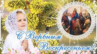 Вербное Воскресенье поздравление! Красивая музыкальная открытка с Вербным Воскресеньем!