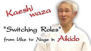Kaeshi Waza   Aikido Counter Technic