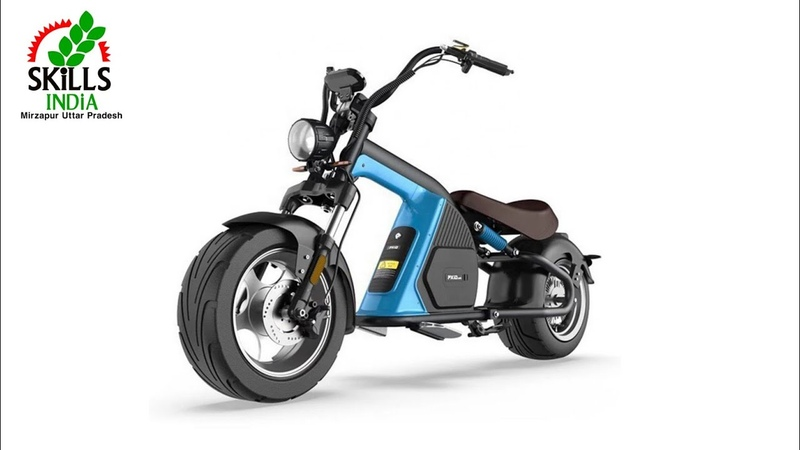 COC Eu Warehouse 2000W 3000W 60v Removable Lithium Battery Electric Scooter China Citycoco M8 E