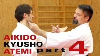 Aikido ATEMI Nervendruckpunkte bei Yokomen Uchi - Aikido, Atemi, Kyusho (Dimmak) Elemente Teil 4