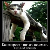 Фотография Артема Ефимова ВКонтакте