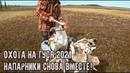 Охота на гуся 2021 в Республике Коми/Напарники снова вместе/Заезжаем в родные места/Часть 1