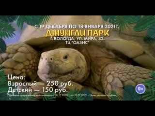 Выставка Джунгли Парк в ТЦ Оазис