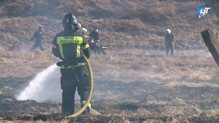 Новгородские спасатели отработали навыки тушения травяных пожаров