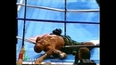 Knockout In 30 Seconds Tua vs Moorer HD 50FPS Russians Comments of NTV Wladimir Gendlin