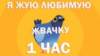Я жую любимую жвачку 1 ЧАС, ЖУЮ, ЖУЮ ЖВАЧКУ, Мышь - Жвачка, ТОЛЬКО ПРИПЕВ